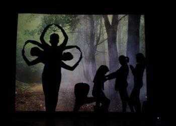 Penampilan Shadow theatre yang menjadi salah satu keunikan dari Inagurasi Peternakan di Taman Budaya, Padang, Sabtu (11/11/2017).  (Foto: Uswatun Hasanah)